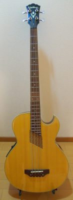 Washburn AB10 Acoustic Bass