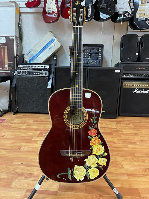 Esteban Spanish Roses Limited Edition Acoustic Electric Guitar