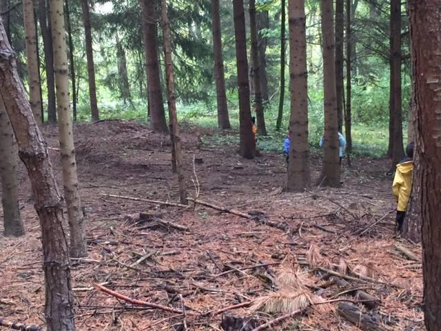 Wald_2015_Spiel_2