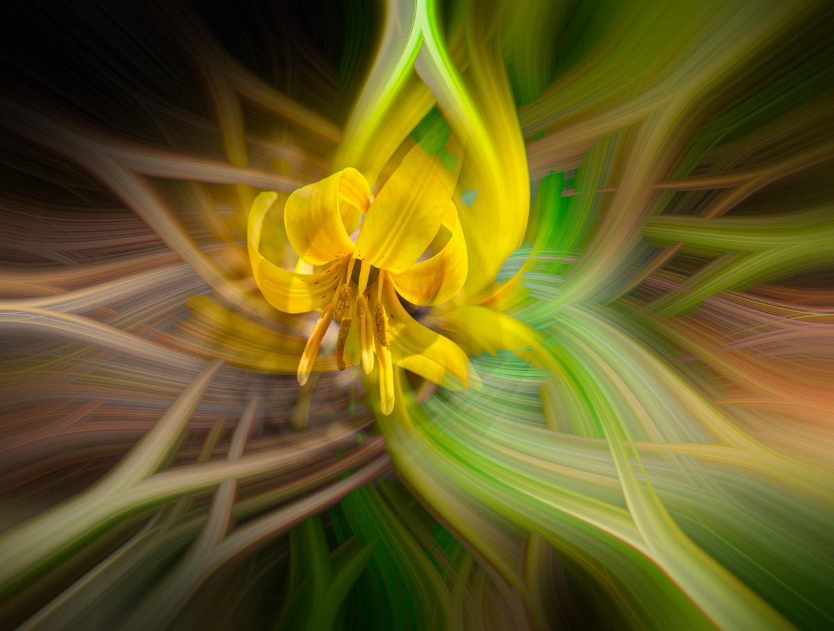 twirls_09