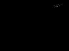 PLI-logo-2021-01-12-all-caps.png