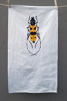 Handlanger Käfer