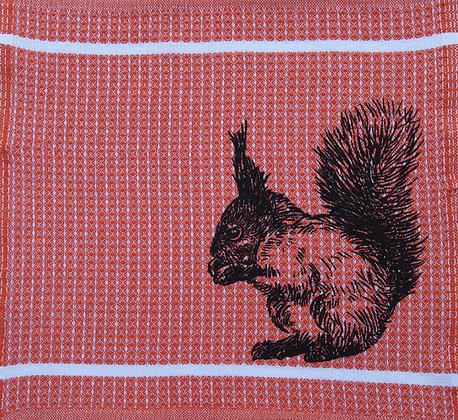 SchmierLappen Eichhörnchen