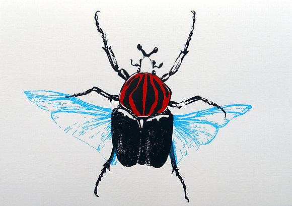 Karte A5 fliegender Käfer