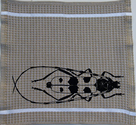 SchmierLappen sand Käfer