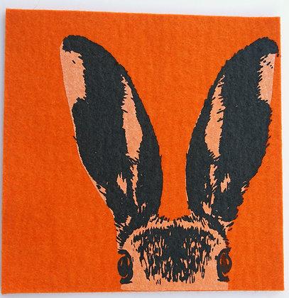 UnterTan orange Hasenkopf