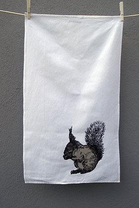 Handlanger Eichhörnchen