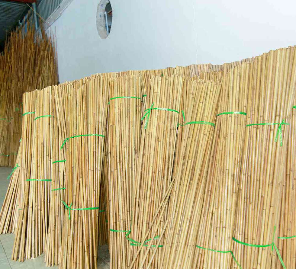Packaging Bamboo Straw