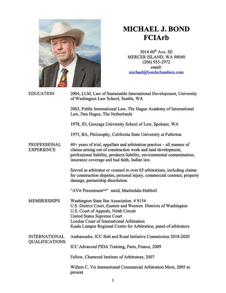 CV updated January 2021.jpg