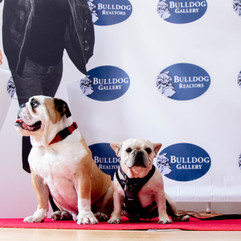 Road Dogs & Rescue Fundraiser