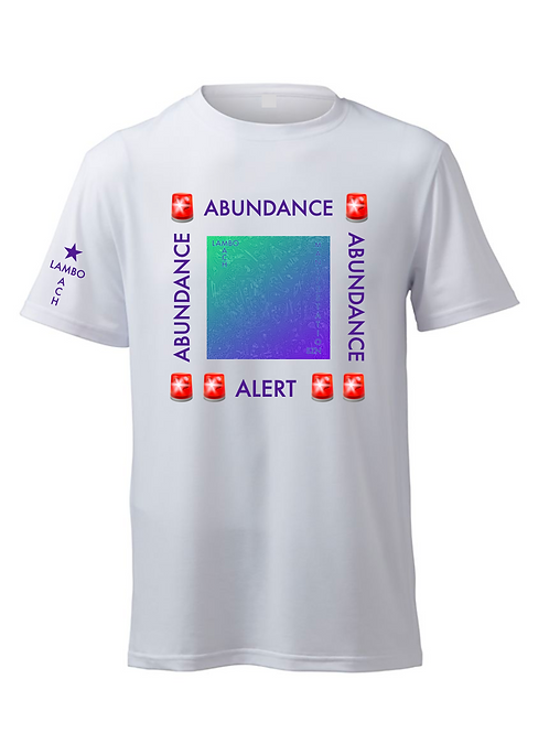 MANIFEST ABUNDANCE T-SHIRT