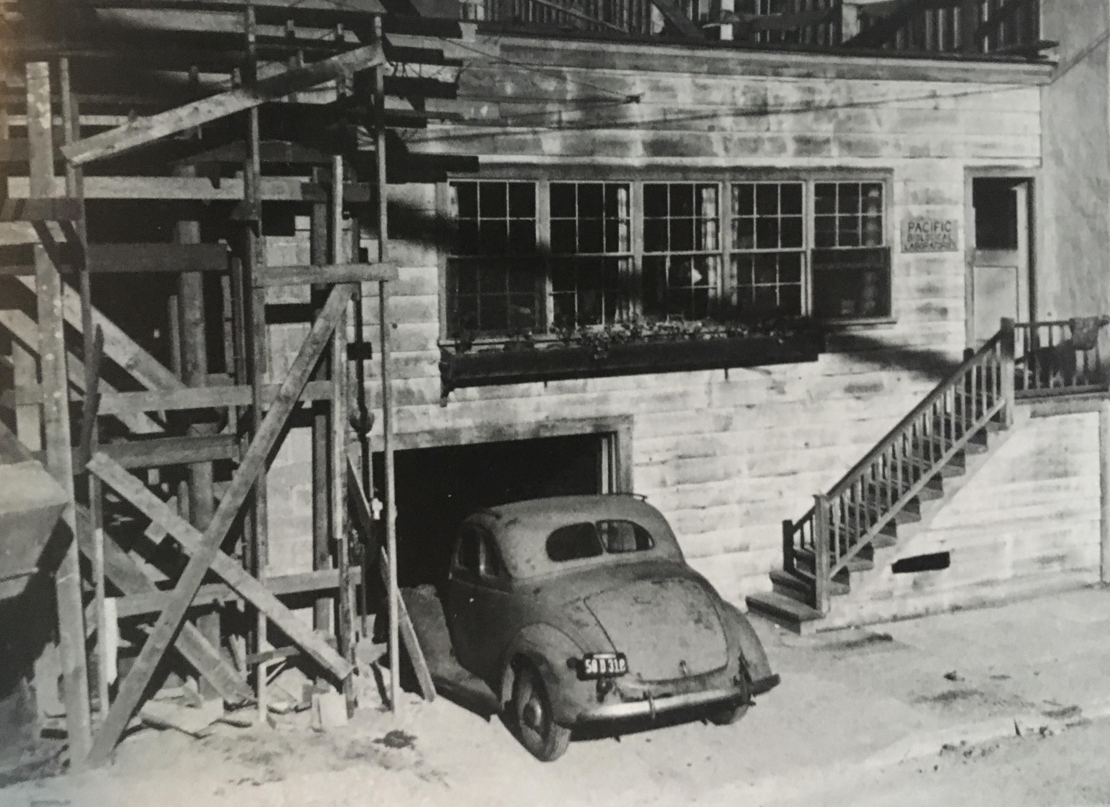 Ed's lab 1946