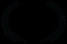 SEMI-FINALIST - BARN STORM FESTIVAL - 20