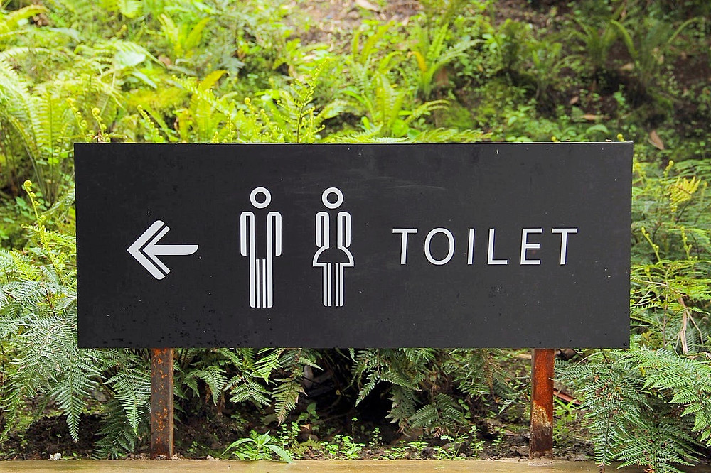 Toilets in Manly