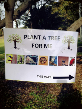 Encouraging local families to plant a tree for future generations