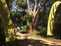 Upgrades to Stony Range Botanical Gardens