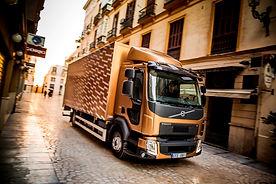 Запасные части для грузовика Volvo FL FE