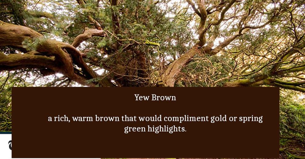 yew_brown.jpg