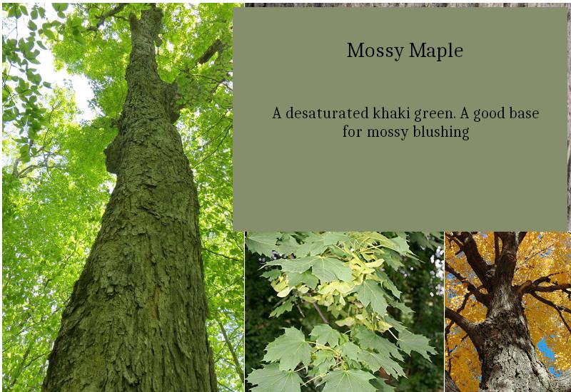 Mossy_maple.jpg