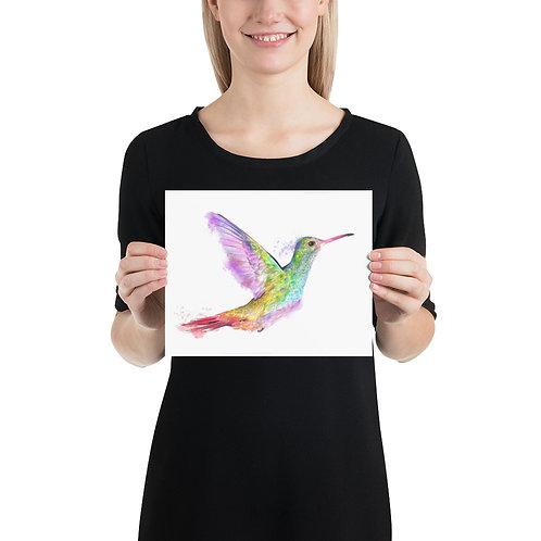 Hummingbird Art Print, Colored Pencil and Digital Media