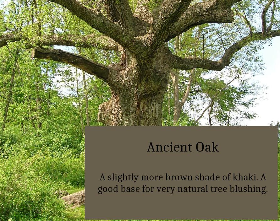 Ancient_Oak.jpg