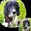 Thumbnail: Custom one-of-a-kind Pet Portrait