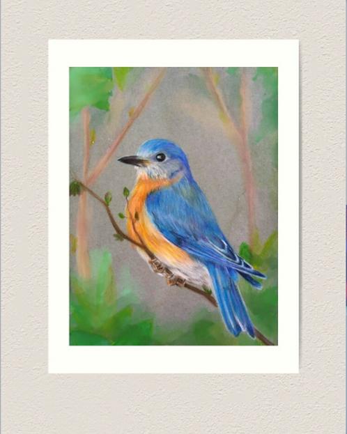 "12x16"" Premium Art Print - Bluebird"