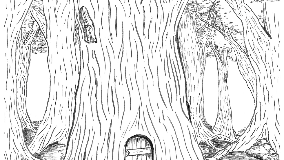 Coloring Page - The House in the Woods