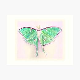 16x12 Premium Art Print Luna Moth