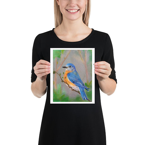 Bluebird Art Print, Colored Pencil and Oil Pastels