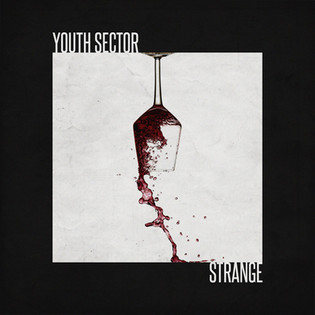 YOUTH SECTOR - STRANGE