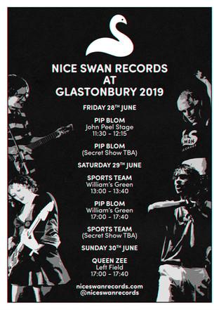 Nice Swan At Glastonbury