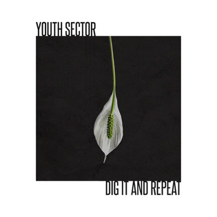 YOUTH SECTOR - DIG IT AND REPEAT