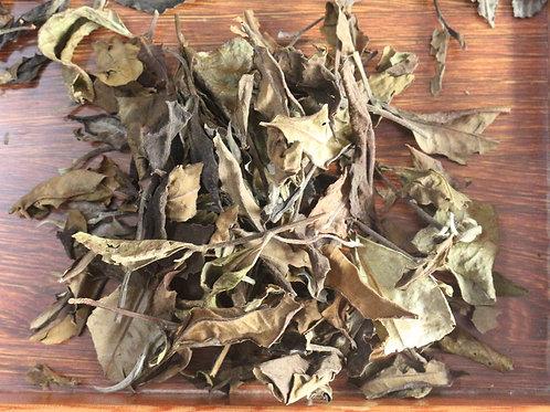 Yiwu Gushu White Tea 2018 Autumn (100g)