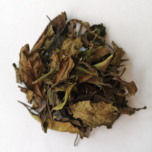 Yiwu White Tea 2020 Spring (50g)