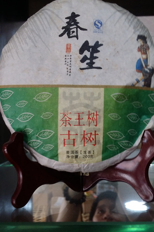 Chawangshu 茶王树 - 2014 Spring Gushu (200g cake)