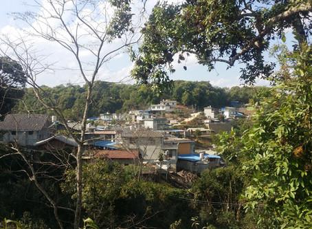 An Introduction to Gaoshan Village in Yiwu (易武高山寨)