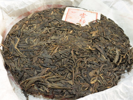 Danggui (当归) - Yiwu Gushu 2013, sample cake tasting session