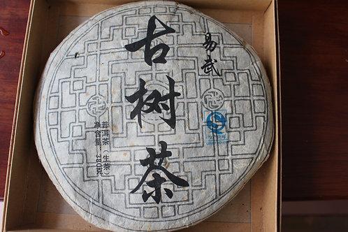 Yiwu Gushu - Old Tree (易武古树) - 2012 Spring (380g cake)