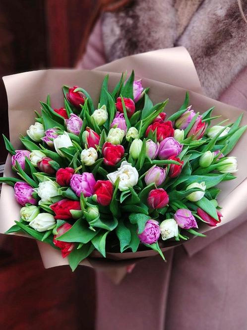 Тюльпаны 51 шт