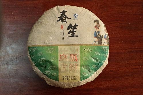 Mahei 麻黑 - 2014 Spring Gushu (200g cake)