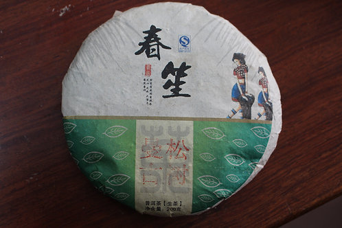 Mansong 曼松 2014 Spring Gushu (200g cake)
