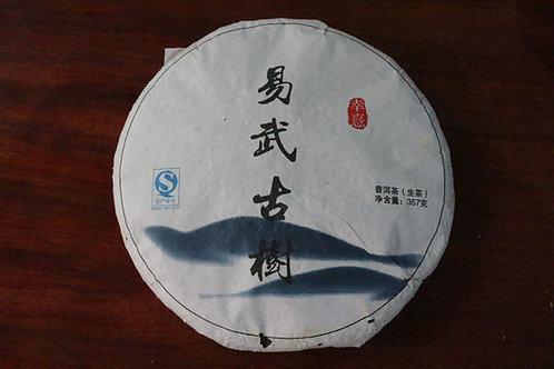 Yiwu Gushu - Old Tree (易武古树) - 2013 Spring (357g cake)
