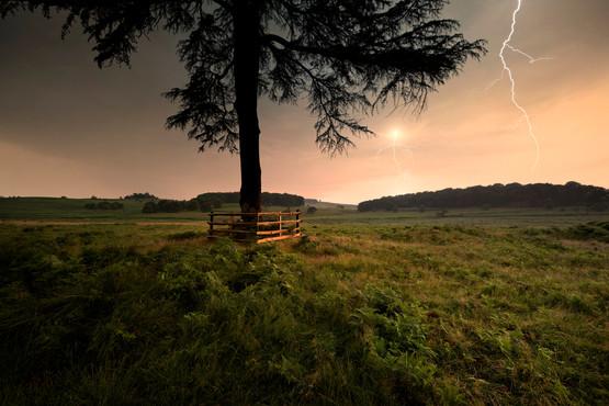 Bradgate Park, Leicestershire