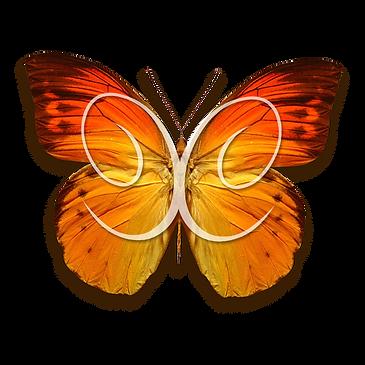 farfalla-2020-logo-e-scritta-2.png