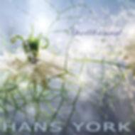 Hans York Spellbound