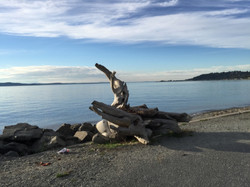 Lincoln Beach and the Puget Sound