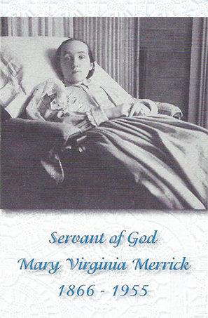 Canonization Prayer Cards, Folded (set of 100)