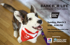 American Cancer Society Bark for Life event
