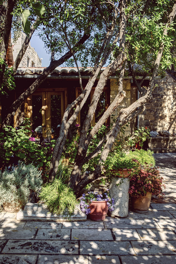 Nikolaou Residence